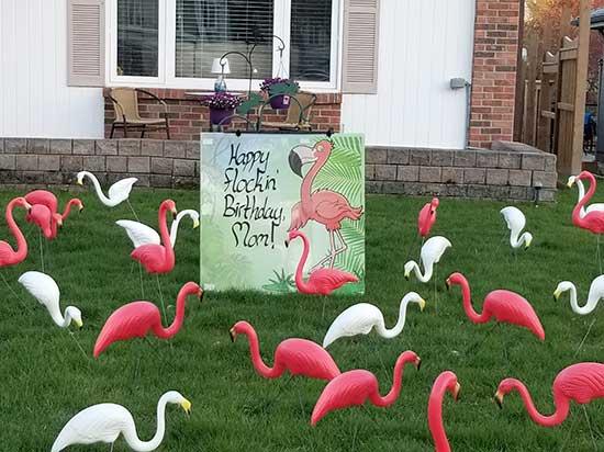 All Occasion 3D Lawn Ornaments